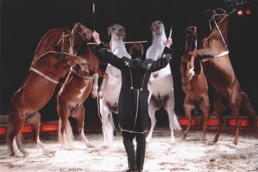 sirkusfinlandia